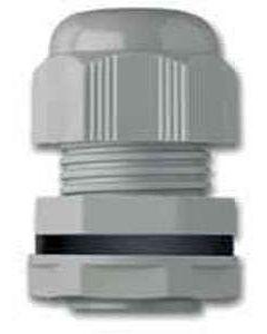 M25DG Compression Gland 25mm 13-18mm Grey